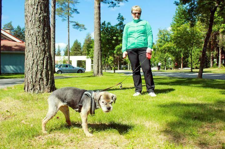 Helsinki Eläinlääkäri