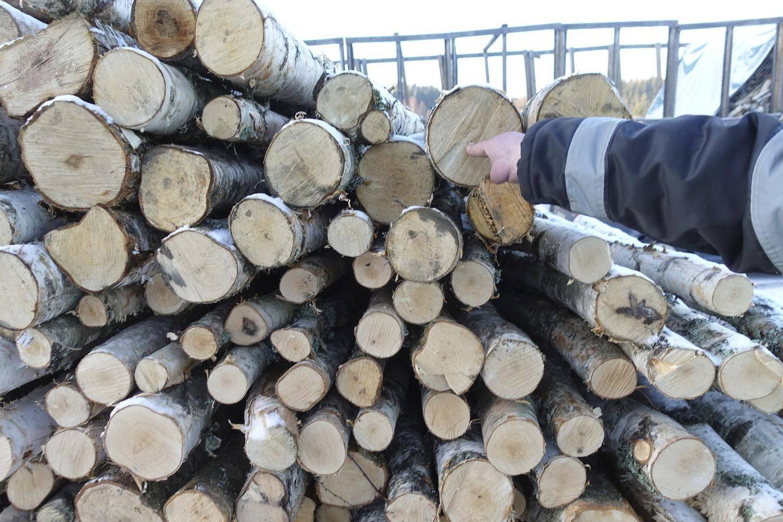 Puun Käyttö Suomessa